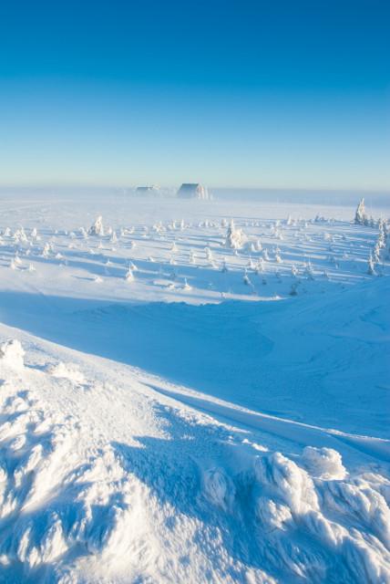 Wintermorgen, Cínovec