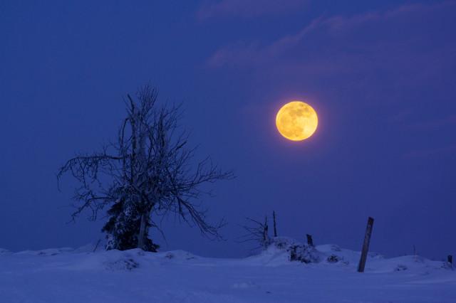 Mondaufgang an der Staatsgrenze bei Zinnwald / Cínovec
