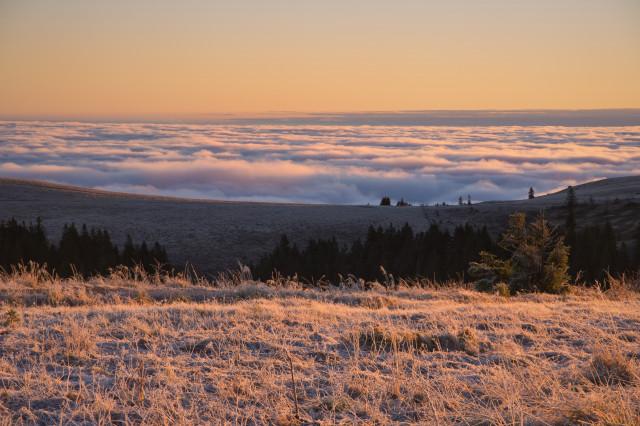 Feldberg, Spätherbstmorgen bei Inversionswetterlage