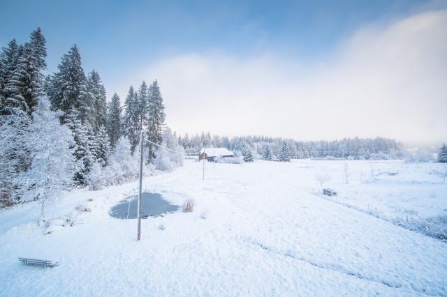 Winterlandschaft, Hinterzarten Winterhaldenweg