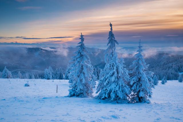 Winterlandschaft auf dem Feldberg