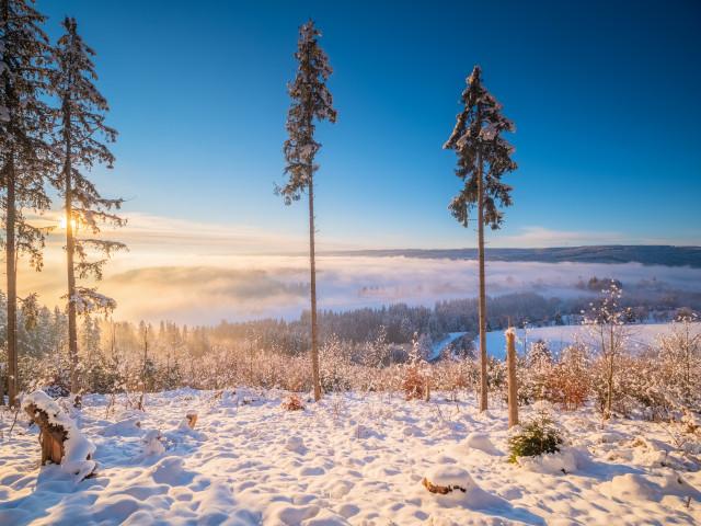 Winterlandschaft bei Kappel