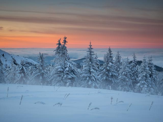 Winterlandschaft, Baldenweger Buck
