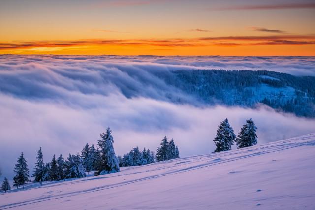 Nebelfall am Stübenwasen