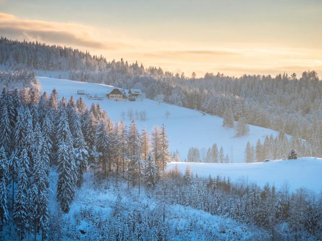 Winterlandschaft bei Neukirch