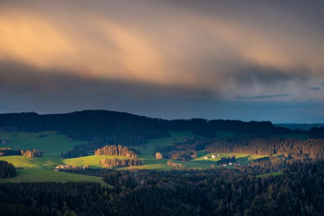 Blick Richtung Breitnau / Weißtannenhöhe