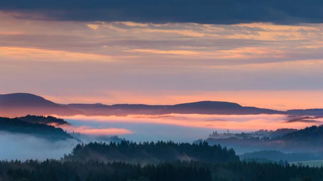 Nebel über der Wutachschlucht