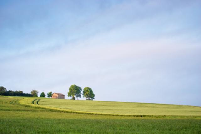 Landschaft bei Dittishausen