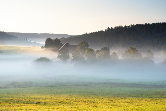 Morgenstimmung oberhalb Waldau