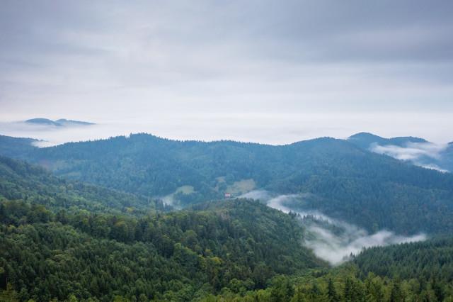 Blick zur Rheinebene zwischen Nebel und Hochnebel