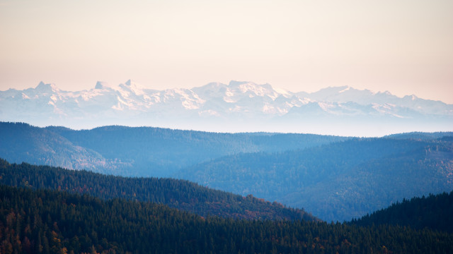 Blick vom Schauinsland zu den Alpen